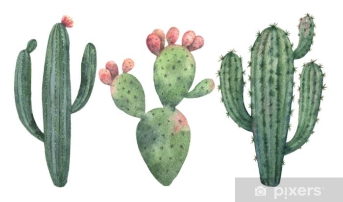 Sticker Pixerstick Ensemble de vecteurs aquarelle de cactus et plantes succulentes isolés sur fond blanc. - Plantes et fleurs