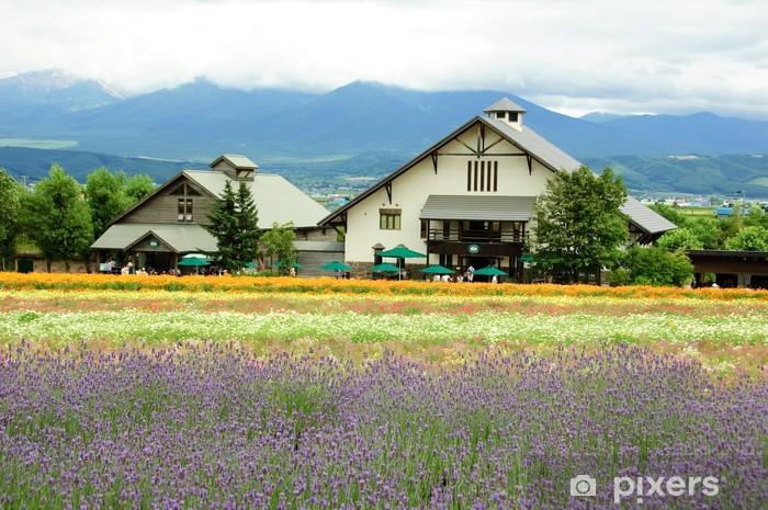 lavender field in Hokkaido in Japan Pixerstick Sticker - Asia