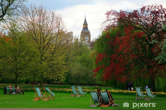 Fototapeta winylowa Park - Dom i ogród