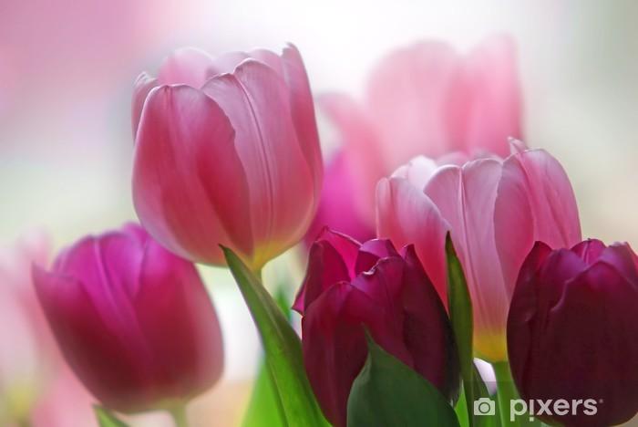 Sticker Pixerstick Tulipes I - Thèmes
