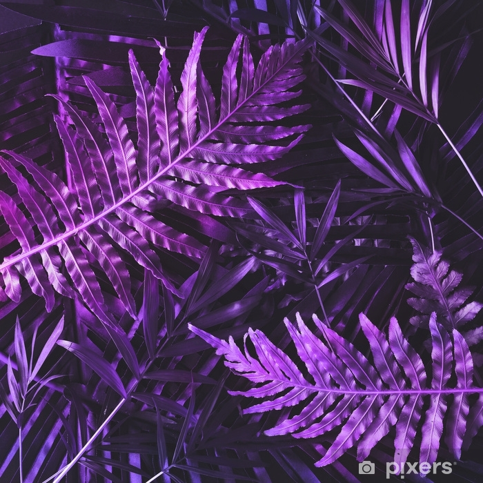 Afwasbaar Fotobehang Creatieve tropische paarse bladeren lay-out. bovennatuurlijk concept. plat leggen. ultraviolette kleuren. - Bloemen en Planten