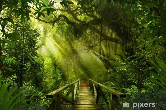 Naklejka Pixerstick Azjatycki tropikalny las deszczowy - Krajobrazy