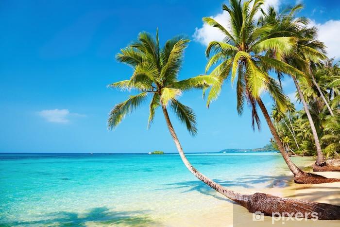 Vinilo Pixerstick Tropical beach - Destinos