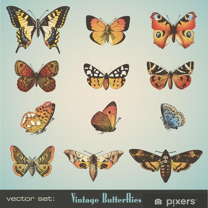 Fototapeta winylowa Vector set: vintage, motyle - Pory roku
