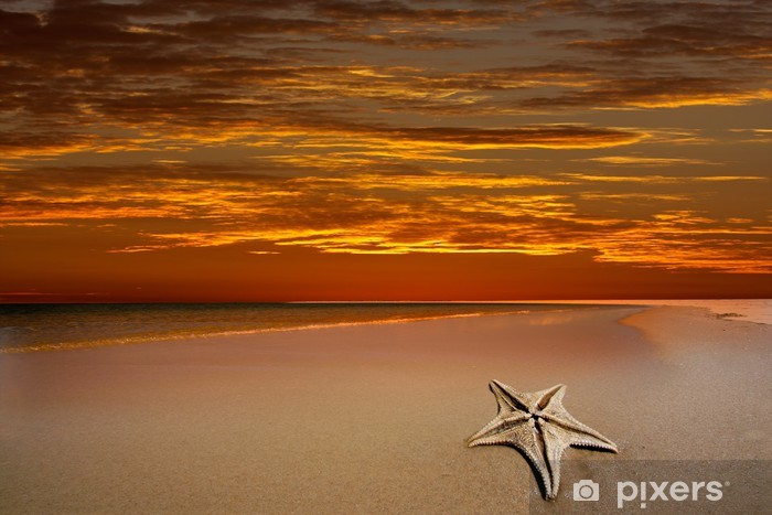 Tropical beach with dramatic red sky and starfish Pixerstick Sticker - Water