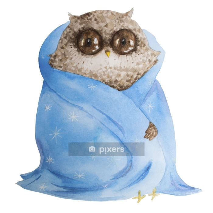 Watercolor owl Winter Owl Aquarelle Bird Wall Decal - Hobbies and Leisure