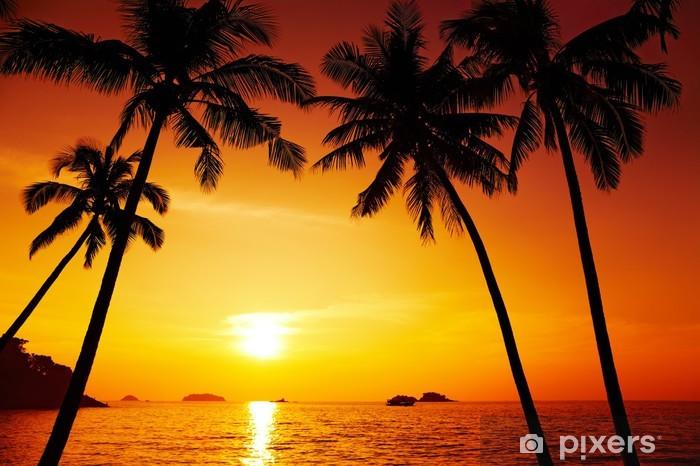 Fototapeta winylowa Palmy sylwetka o zachodzie słońca - Palmy