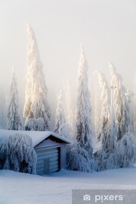 Fototapete Winter Scene Pixers Wir Leben Um Zu Verandern