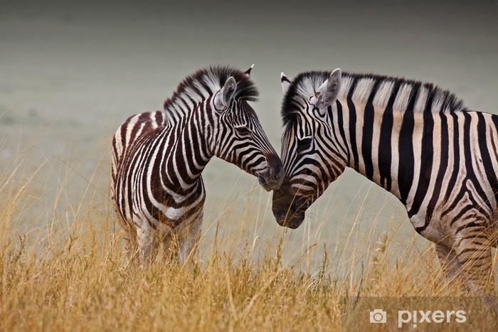 Vinyl Fotobehang Zebras - moeder en zoon - Thema's