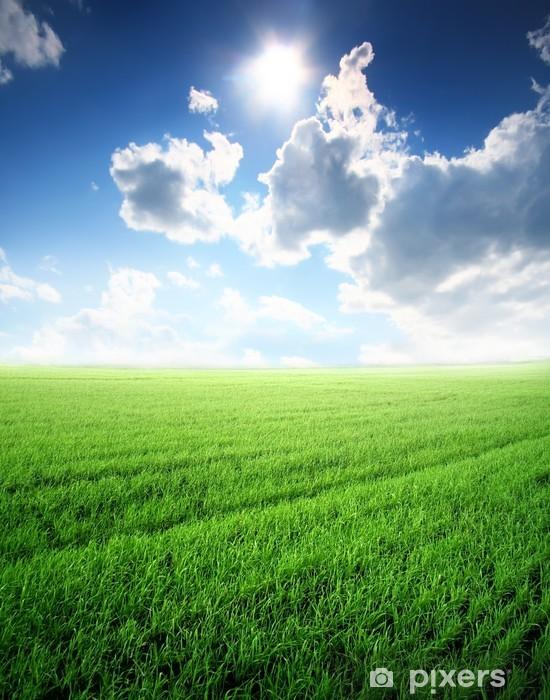 Vinyl-Fototapete Schöne Sommerlandschaft mit Sonnenlicht und grünen Rasen - Jahreszeiten