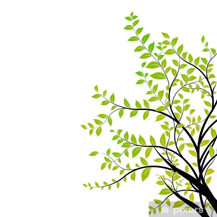Ağaç Dalı Vektör Yeşil Ve Doğal çiçek Tasarım öğesi Duvar Resmi