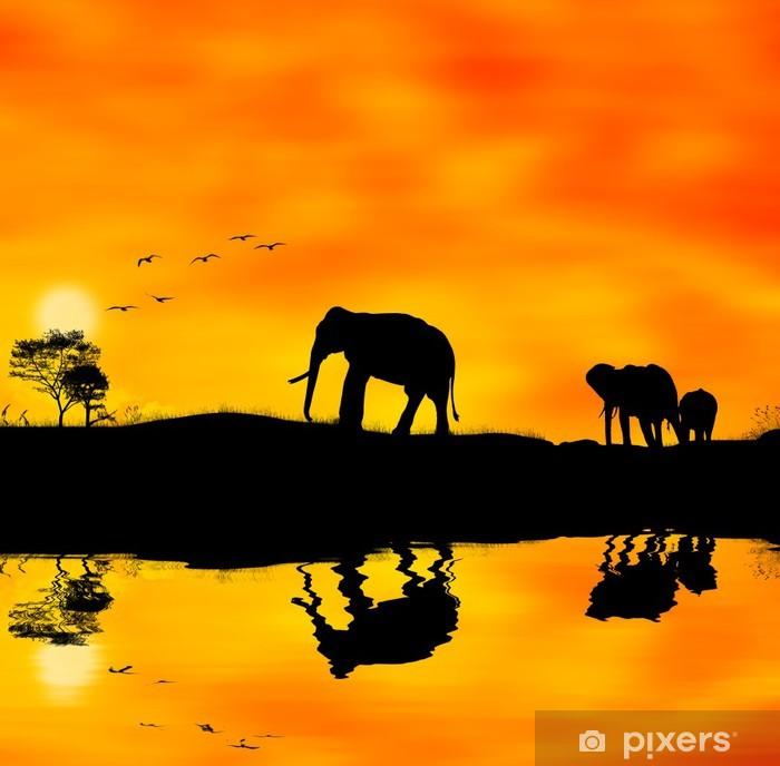 Fototapeta winylowa Elefanti afryka - Tematy