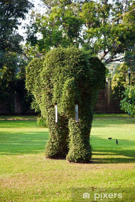 bushes cut to elephant figure in the park of Bang Pa-In Palace Pixerstick Sticker - Other Feelings