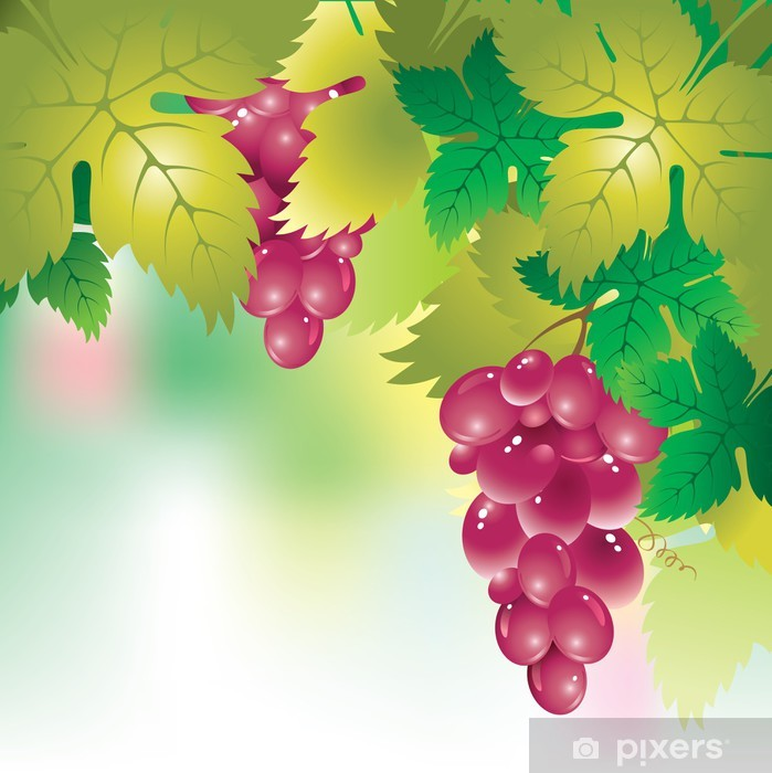 Background With A Bunch Of Grapes And Grape Leaves Wall Mural Pixers We Live To Change