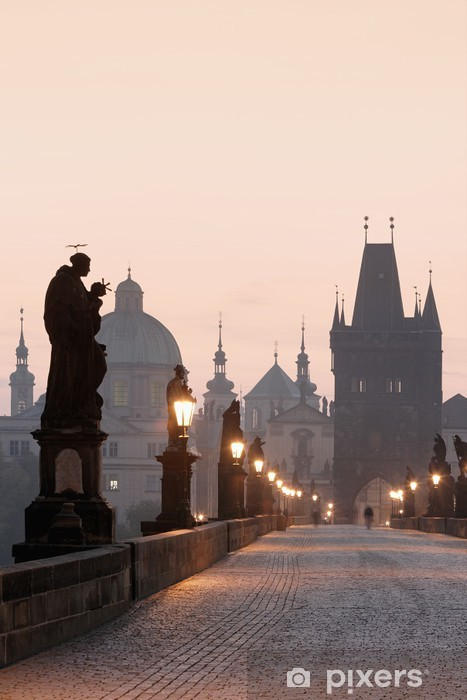 prague charles bridge Vinyl Wall Mural - Prague