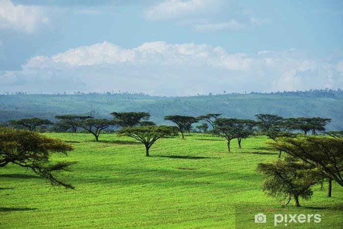 Naklejka Pixerstick Afrykańskie krajobrazy - Afryka