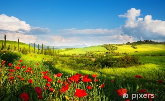 Carta Da Parati Paesaggio Di Campagna Italia Arte Con Fiori Di