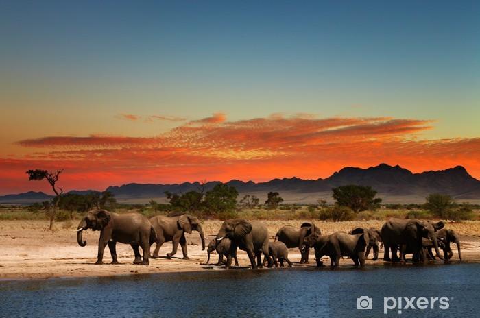 Fotomural Estándar Manada de elefantes en la sabana africana - Temas