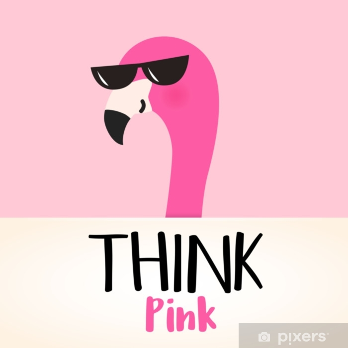 Image result for PINK FLAMINGO, CARTOON