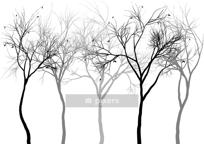 foggy forest, vector Wall Decal - Wall decals