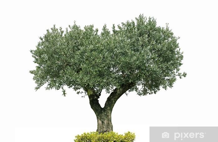 Naklejka Pixerstick Oliver Centenaire - Dom i ogród