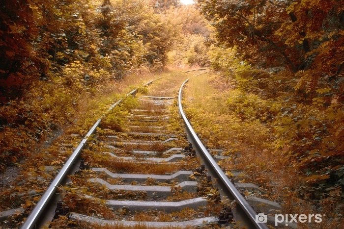 Vinyl Fotobehang Spoorlijn in de herfst - Landschappen