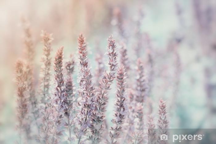 Pixerstick-klistremerke Eng blomster i pastell farger - Planter og Blomster