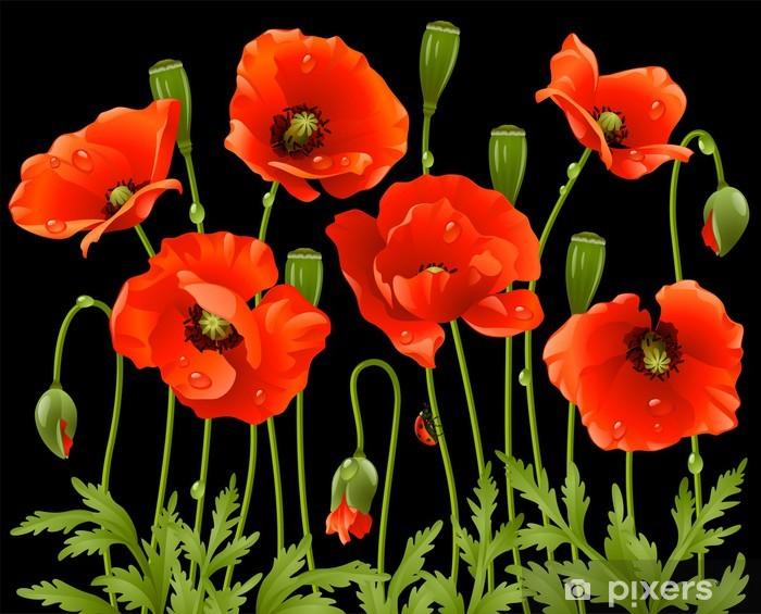 Vinilo Pixerstick Flores de primavera amapola - Temas