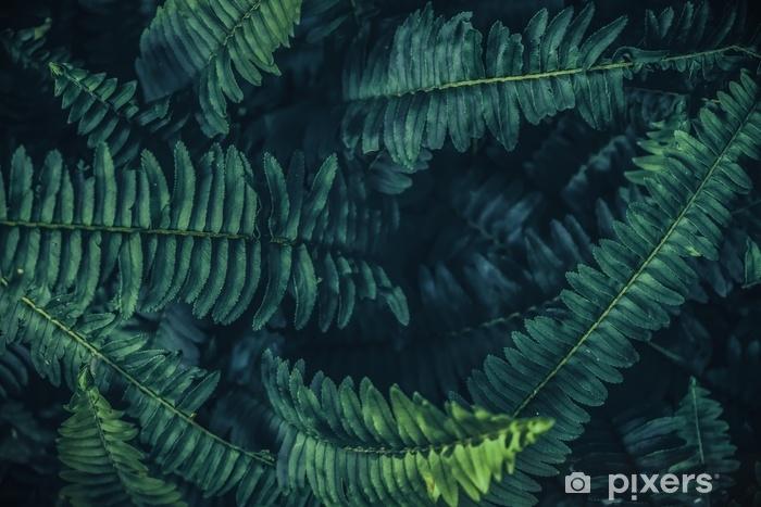 Trooppinen lehdet tausta, vihreä taustakuvio. Pixerstick tarra - Kasvit Ja Kukat
