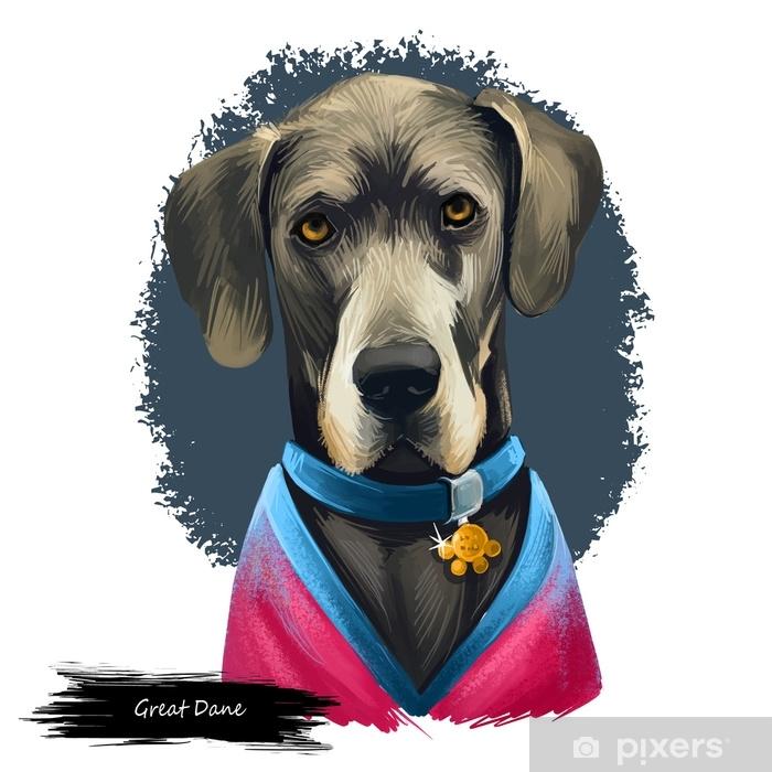 Papier peint vinyle Dogue allemand, dogge allemand, illustration de l'art numérique chien mastiff allemand isolé sur fond blanc. origine allemande en activité, chien de garde. portrait dessiné à la main pour animaux de compagnie. conception graphique clip art - Animaux