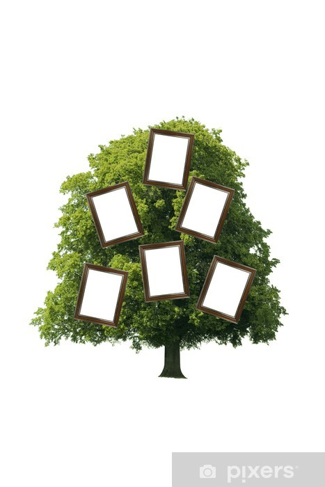 Stammbaum Pixerstick Sticker - Trees