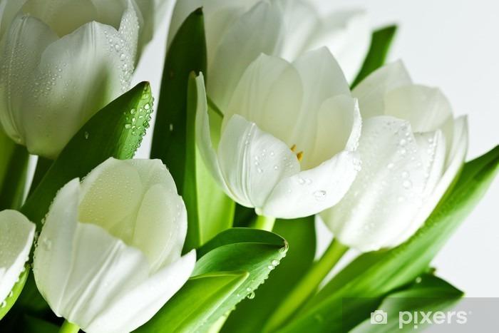 White Tulips Vinyl Wall Mural - Themes