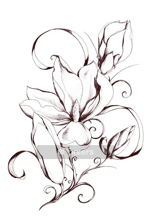 Naklejka na ścianę Kształt magnolii własnym flowers.My kompozycji. - Naklejki na ścianę