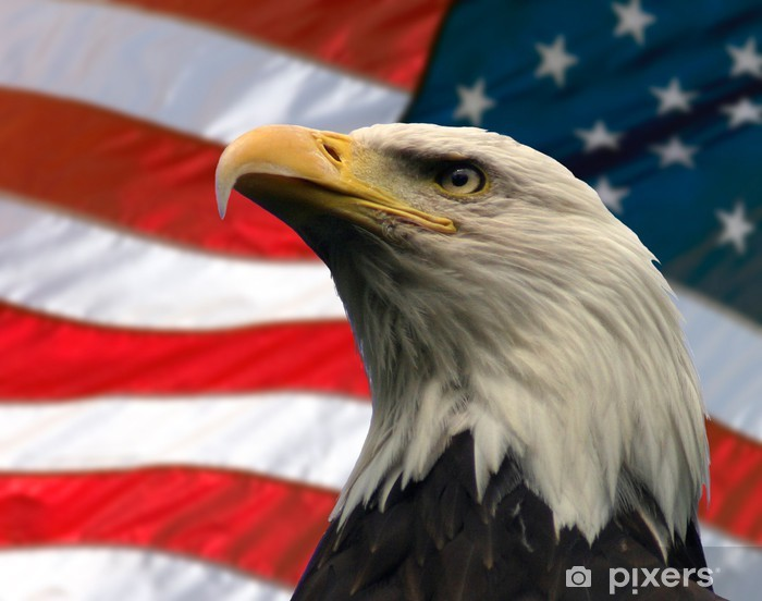 American Eagle Logo Wallpaper (68+ images)