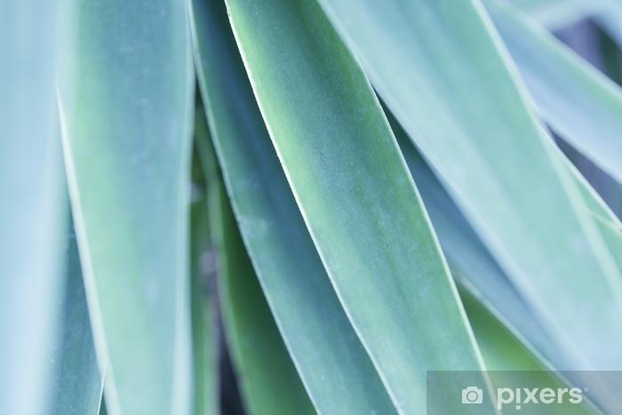 Fotomural Autoadhesivo Hoja verde tropical - Plantas y flores