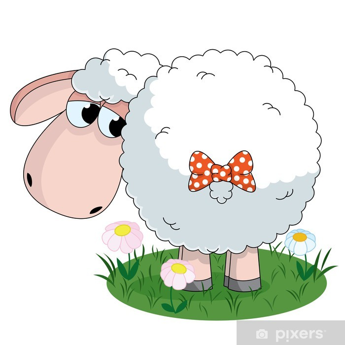 Poster Mouton - Mammifères