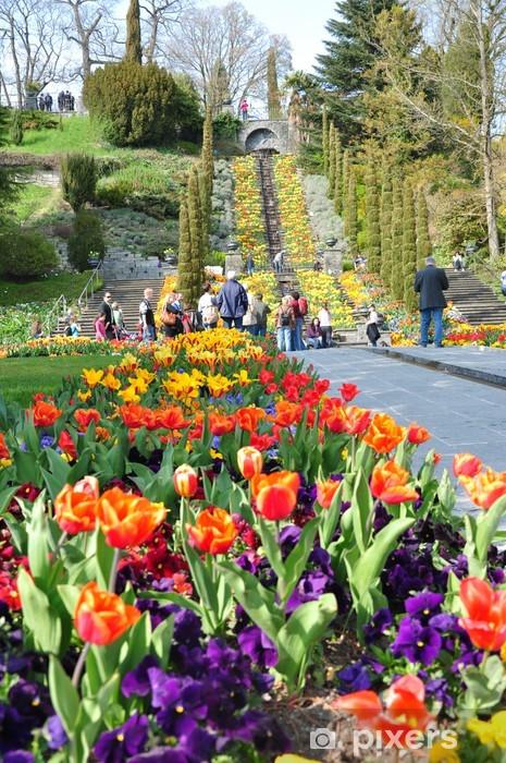 Naklejka Pixerstick Wyspa Mainau kwiat, Baden-Württemberg, Niemcy. - Wakacje