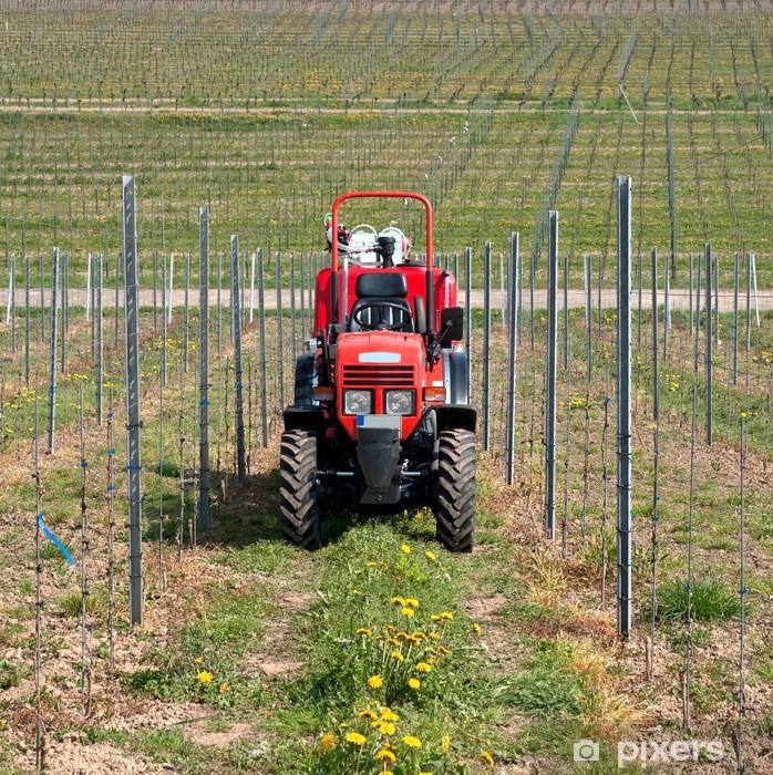 Plakat Ciągnik w winnicy - Rolnictwo