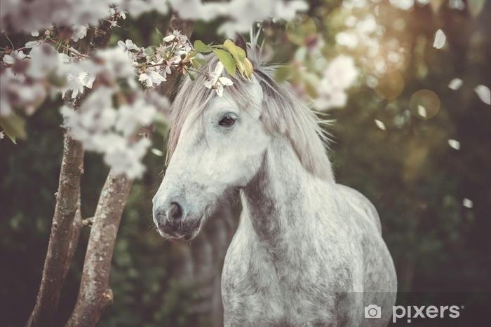 Fototapeta winylowa Junger majstrować - Zwierzęta
