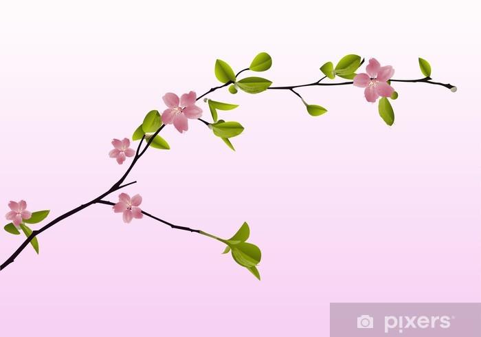 Adesivo Ramo Di Fiori Di Ciliegio In Primavera Su Sfondo Rosa Pixerstick