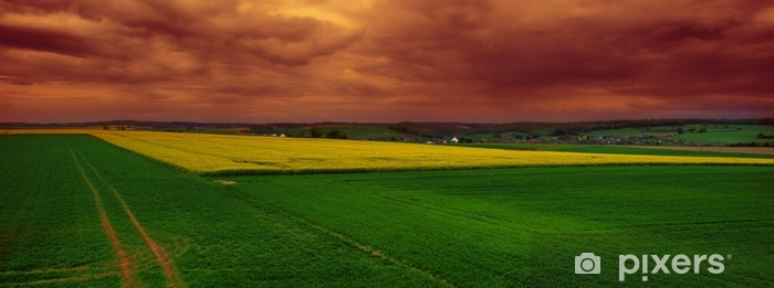 Fototapeta winylowa Belgijska wieś - Ekologia