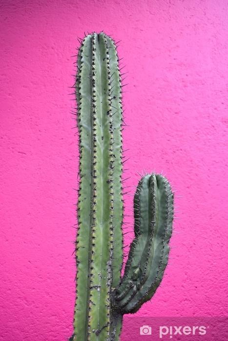 Fotomural Estándar Cactus Mexicano - Muro Magenta - Plantas y flores