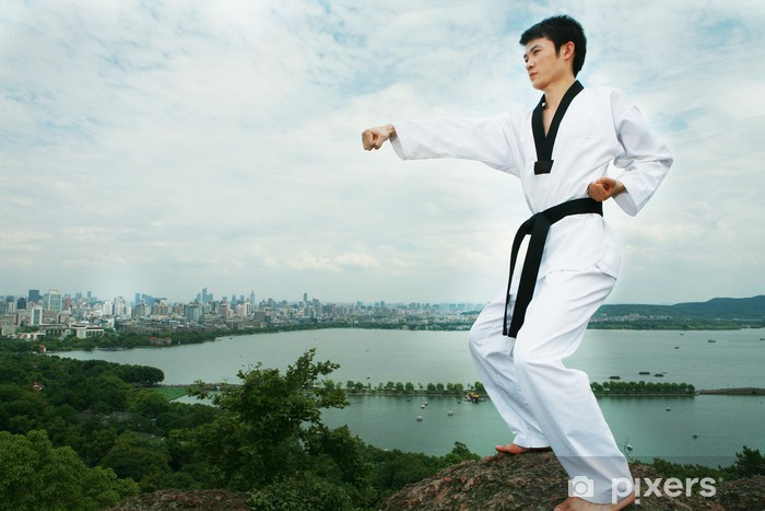 one asian man playing with taekwondo outdoor Vinyl Wall Mural - Themes