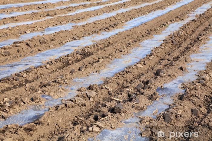 Vinyl-Fototapete Boden mit Kunststoff-Schutzstreifen für Werk in Feld - Landwirtschaft