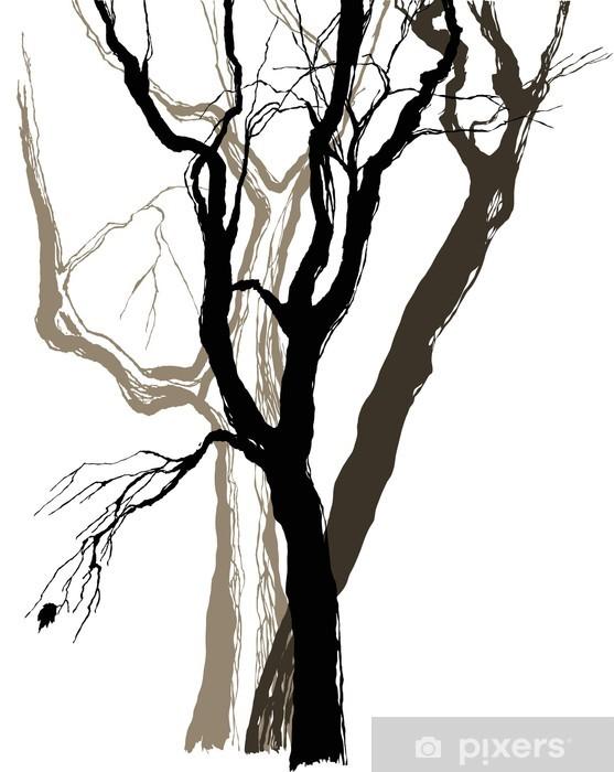 Fototapeta winylowa Stare drzewa rysunek graficzny szkic - Naklejki na ścianę
