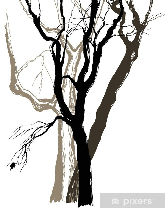 old trees drawing graphic sketch Vinyl Wall Mural - Wall decals