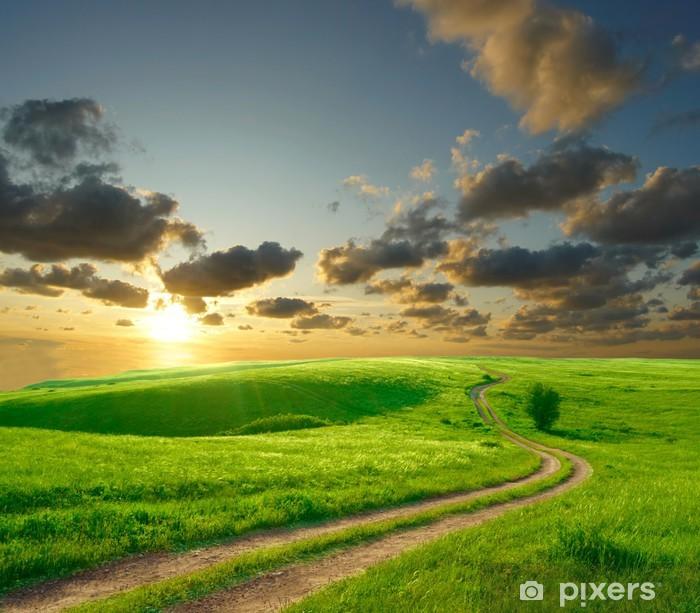Fototapeta zmywalna Latem krajobraz z zielona trawa, drogowego i chmury - Chmury