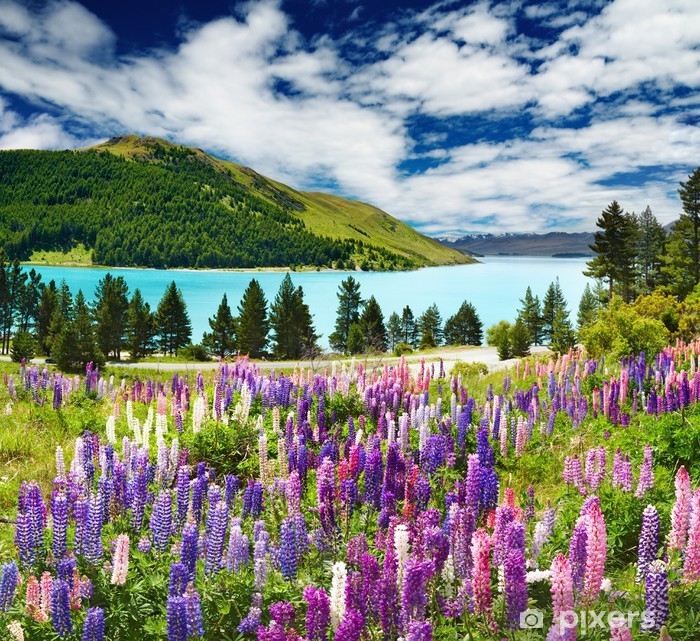Pixerstick Sticker Lake Tekapo, Nieuw-Zeeland - Thema's