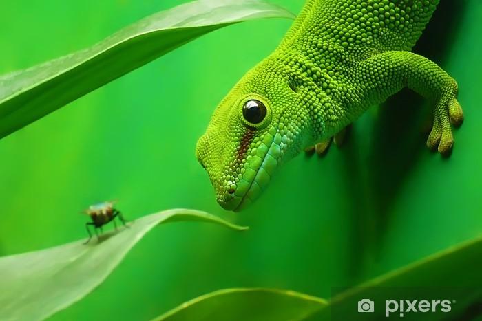 Vinilo Pixerstick Gecko lagarto verde - Temas