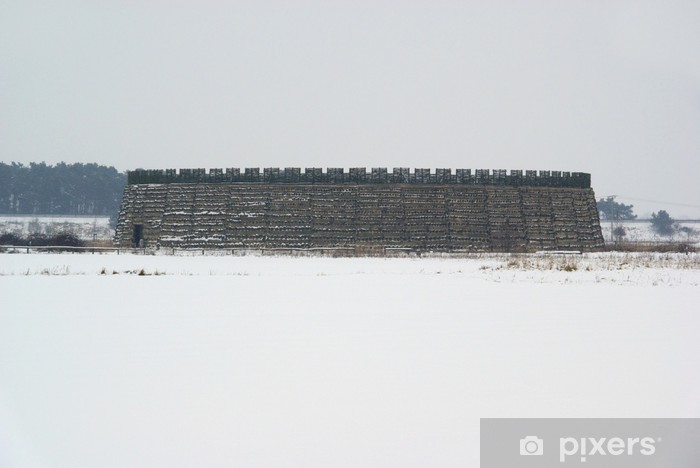 Nálepka Pixerstick Raddusch Slawenburg - Raddusch slovanské Fort 01 - Evropa